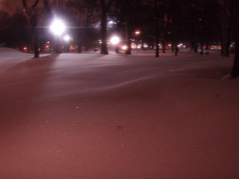 Snowdrifts in Park