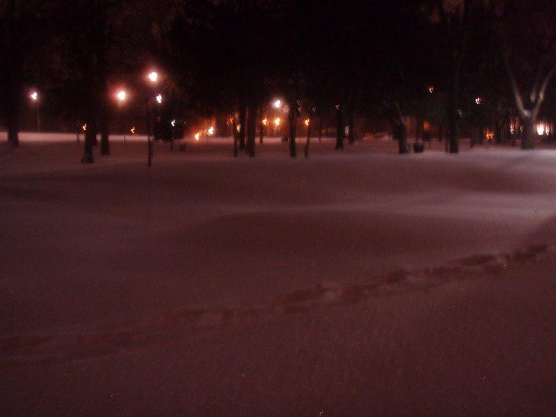 Snow ... yup ... December in Toronto ...